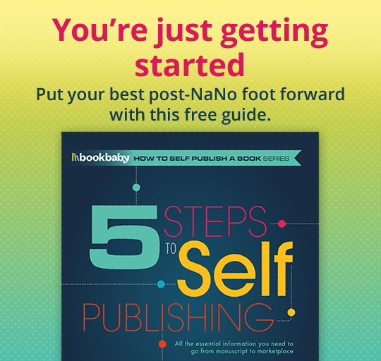 You're just getting started. Put your best post-NaNo foot forward with this free guide.