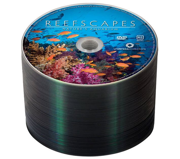 100 full-color DVDs with content for $117